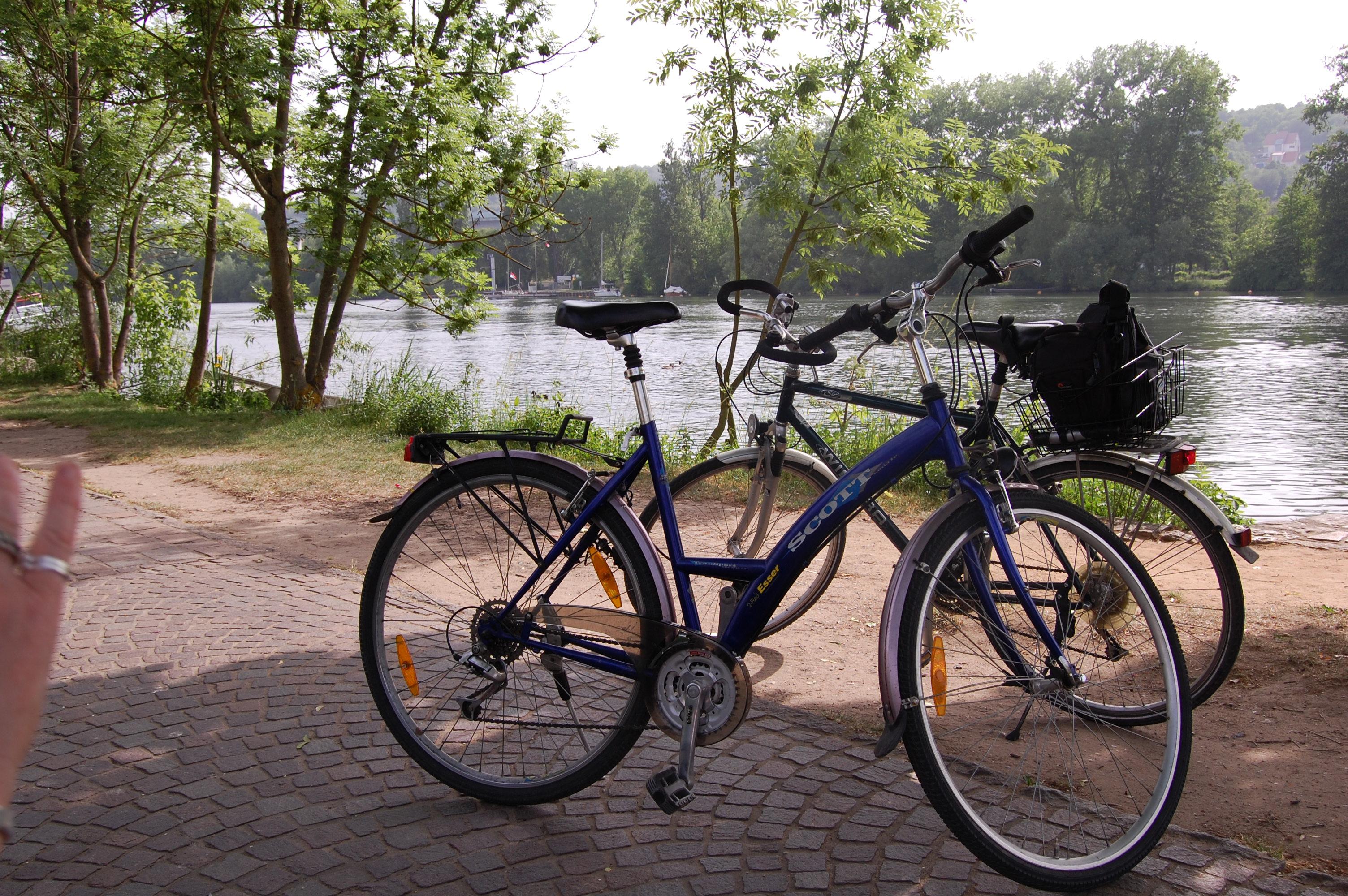 Radfahren am Main Radweg
